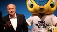 Blatter_fuleco